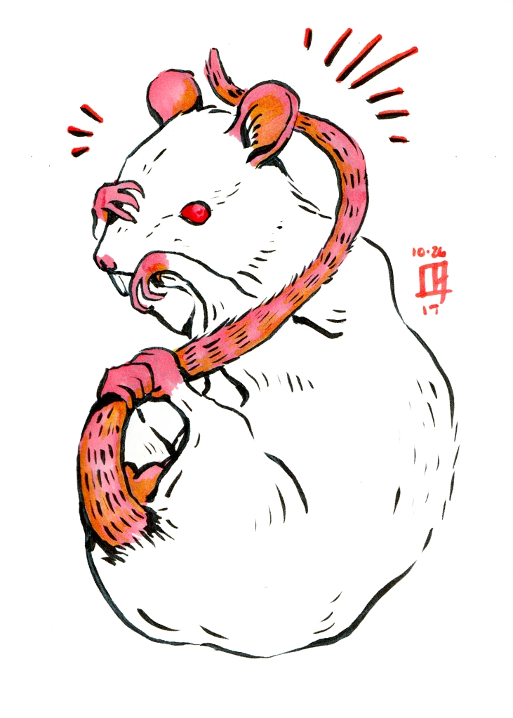 Ink illustration of a rat grasping it's tail and face