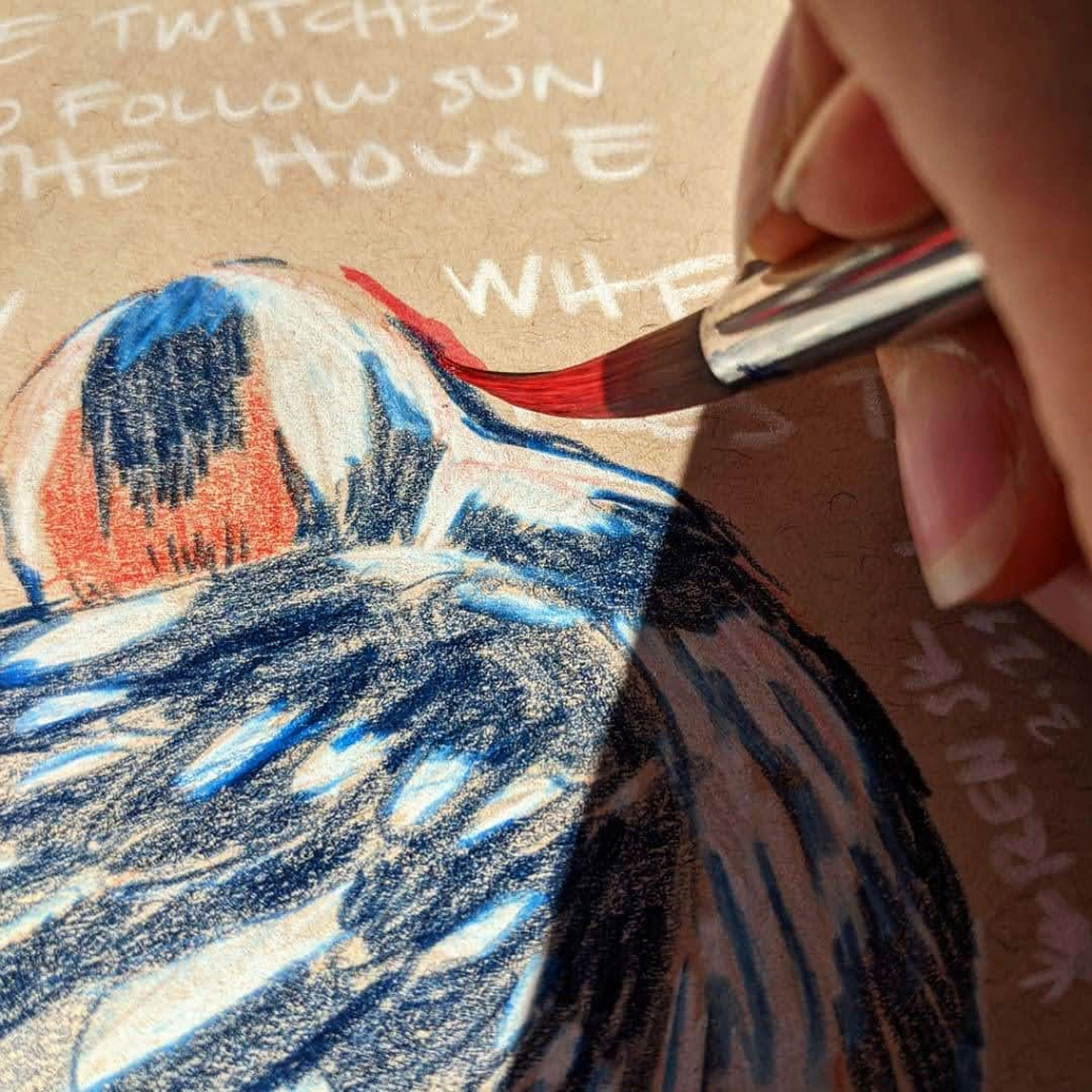 Painting the red outline on the hairy woodpecker illustration. Close up of the brush.