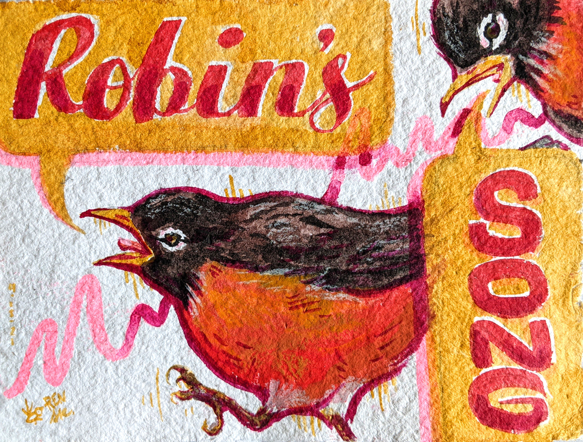Illustration of two robins singing with speech bubbles that say 'Robin's Song'